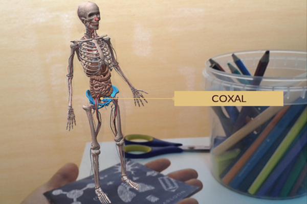 Una app para aprender anatomía