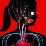 Formas diferentes de conocer el cuerpo humano