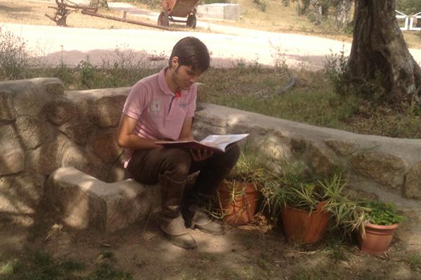 La lectura por placer, clave en el rendimiento y los resultados académicos