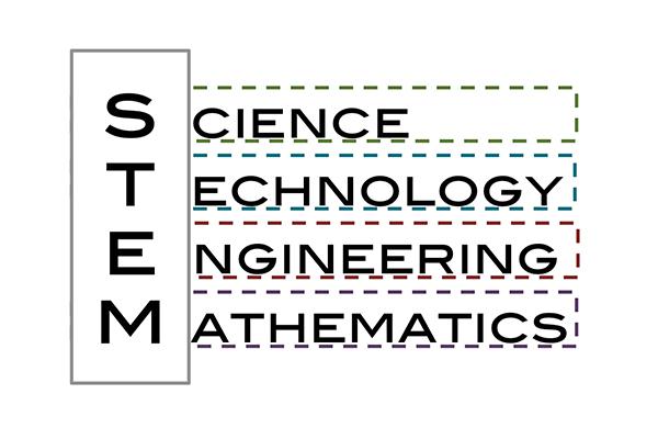 El papel de las bibliotecas en la educación STEM desde las primeras edades