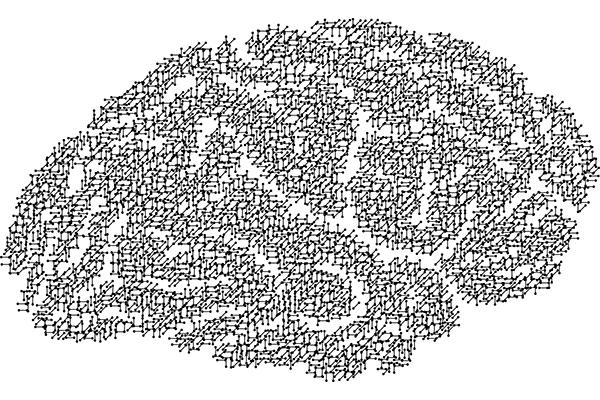 La actividad cerebral en la infancia da pistas de nuestra evolución lectora