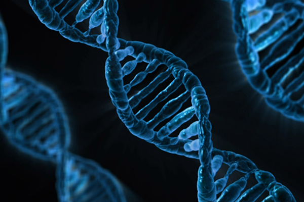 ¿Influye nuestro ADN en nuestras habilidades como lectores?