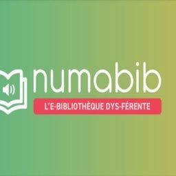 NumaBib, una biblioteca digital de libros de texto para estudiantes con dificultades de aprendizaje