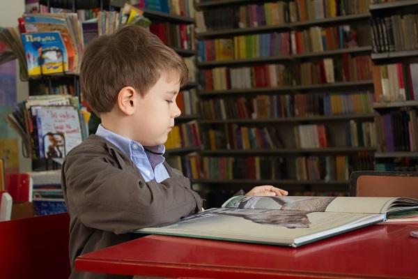 II Edición del Programa Modular en Bibliotecas Escolares
